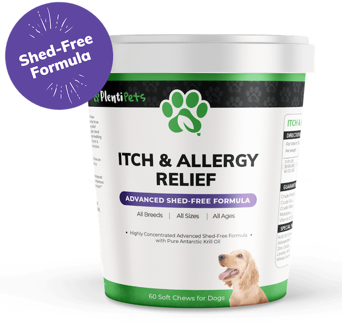 itch and allergy relief chews